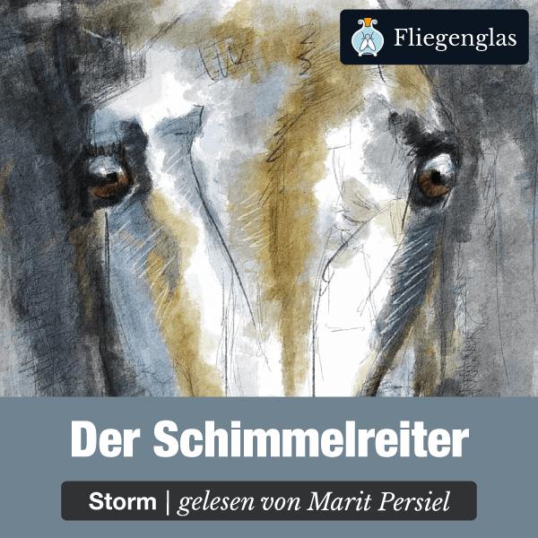Schimmelreiter – Theodor Storm – Literatur Hörbuch
