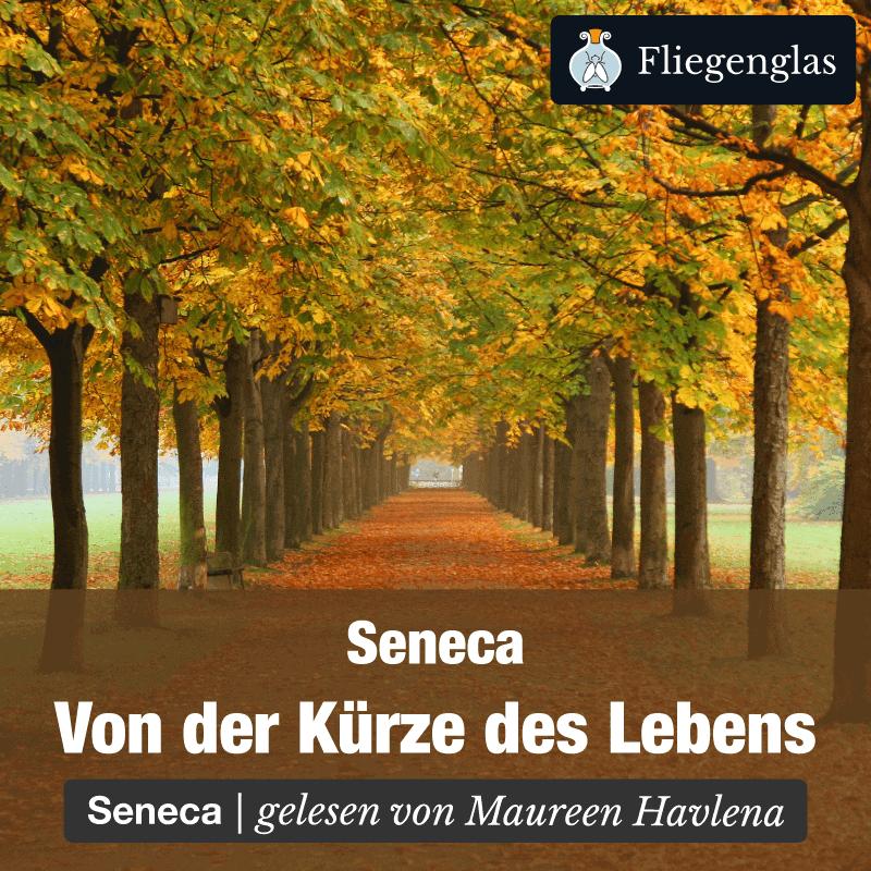 Kürze des Lebens – Seneca – Philosophie Hörbuch