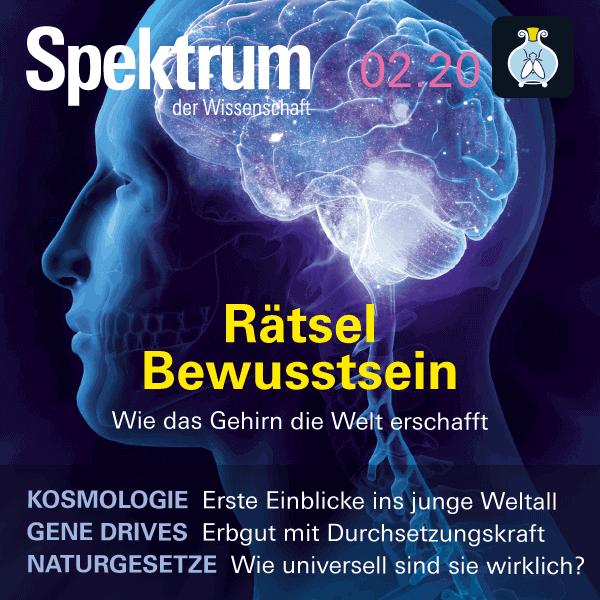 Bewusstsein: Rätsel – Wie das Gehirn die Welt erschafft – Spektrum der Wissenschaft