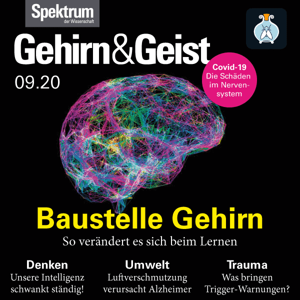 Baustelle Gehirn – Gehirn&Geist 2020 09 – Hörbuch – Fliegenglas