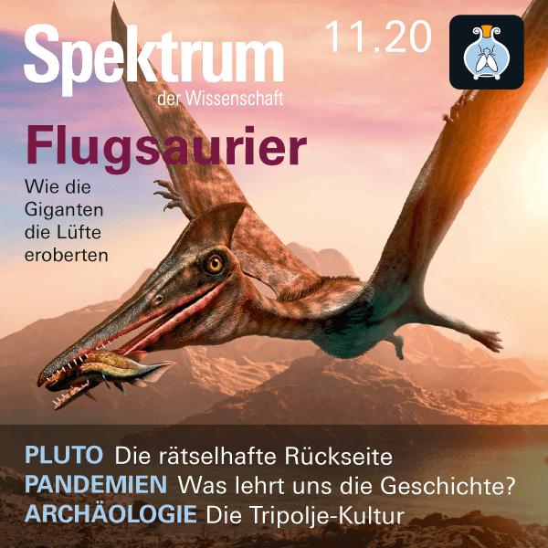 Flugsaurier – Spektrum der Wissenschaft 2020/11 – Hörbuch