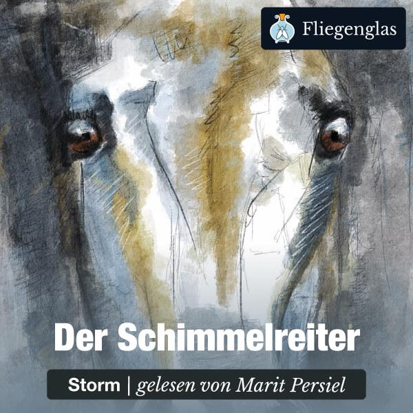 Der Schimmelreiter von Theodor Storm – Hörbuch