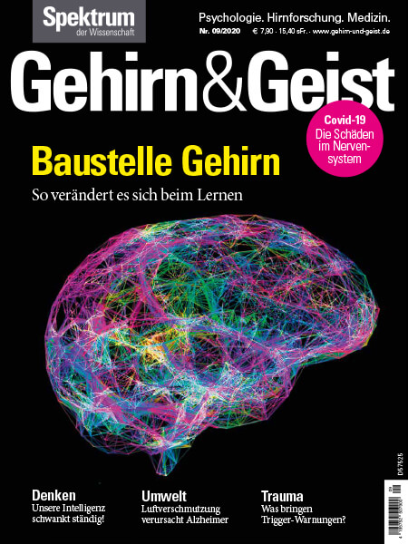 Baustelle Gehirn – Gehirn und Geist – Hörbuch