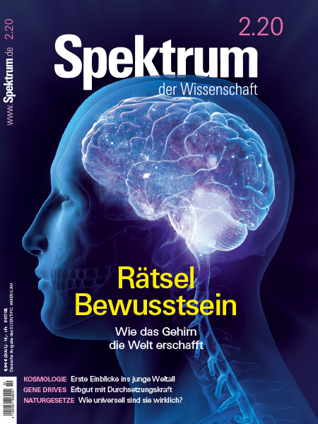 Rätsel Bewusstsein – Wie das Gehirn die Welt erschafft – Spektrum der Wissenschaft – Hörbuch