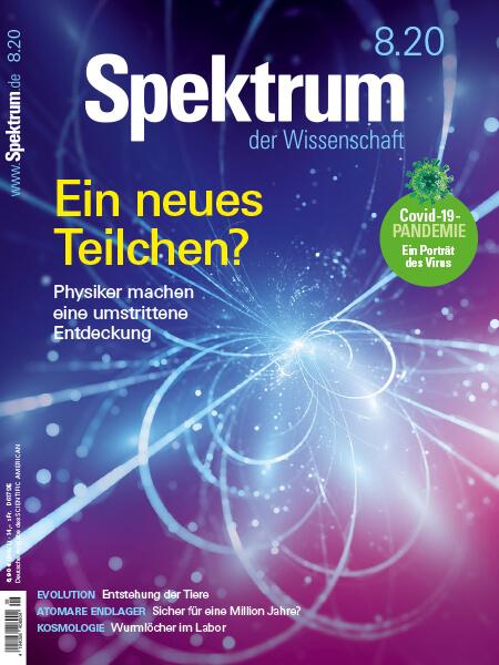 Ein neues Teilchen? Physiker machen eine umstrittene Entdeckung – Spektrum der Wissenschaft – Hörbuch