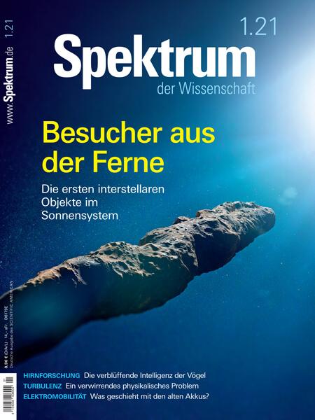 Interstellare Objekte: Besucher aus der Ferne – Spektrum der Wissenschaft – Hörbuch