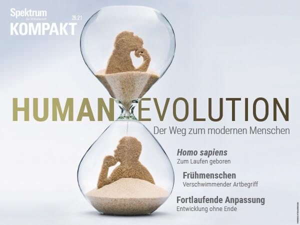 Human Evolution: Der Weg zum modernen Menschen | Spektrum Kompakt | Hörbuch